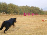 Imgp042011